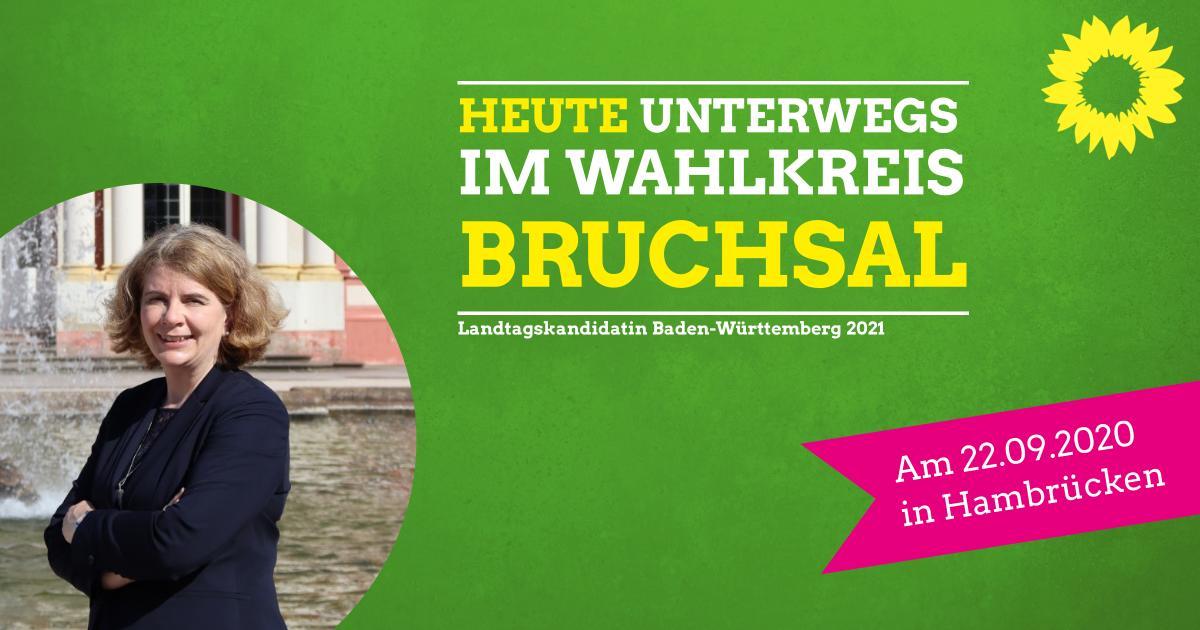 Hambrücken Gemeinderatssitzung – Unterwegs im Wahlkreis