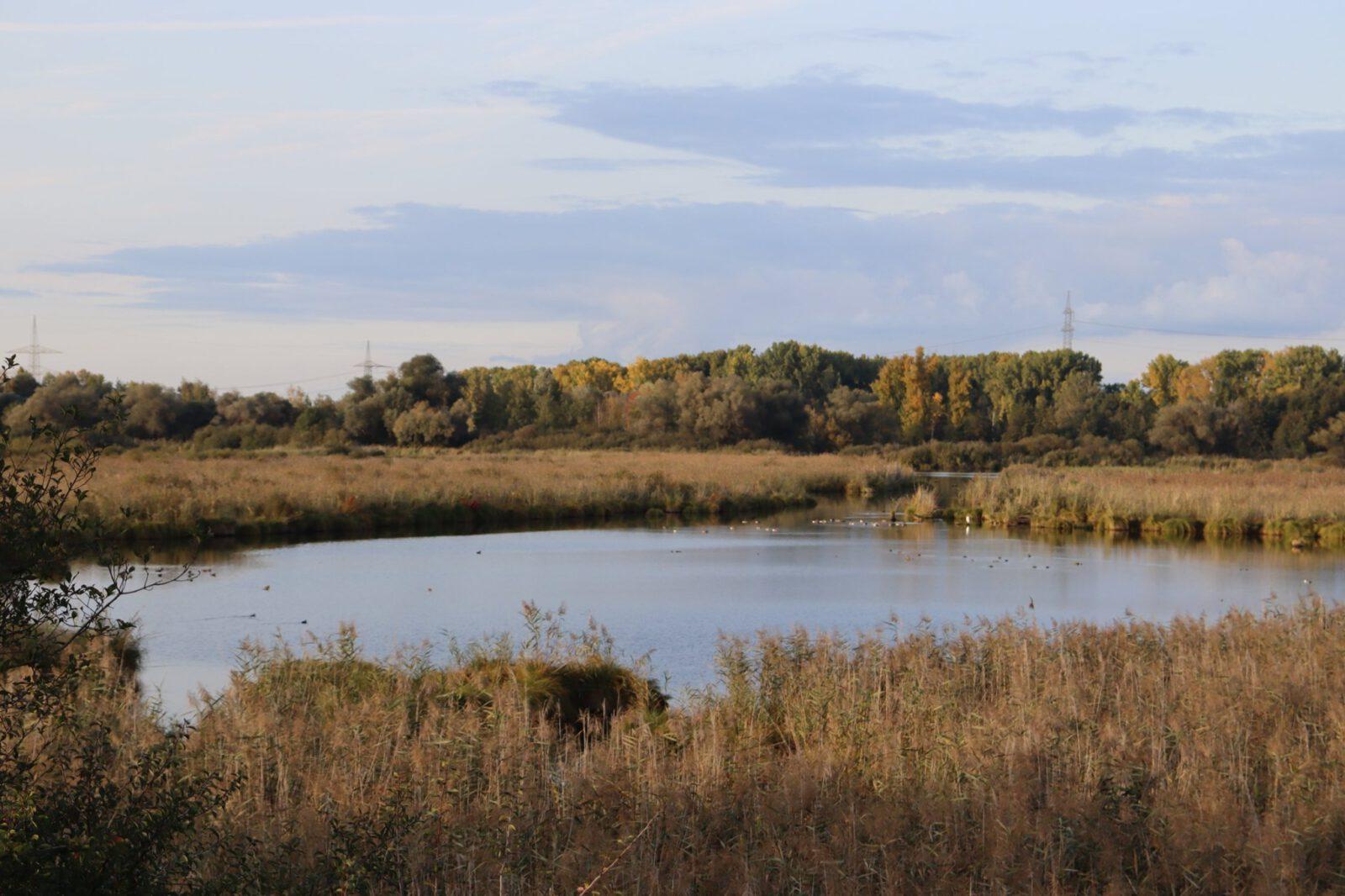 Wanderung von der Eremitage ins nahe Naturschutzgebiet