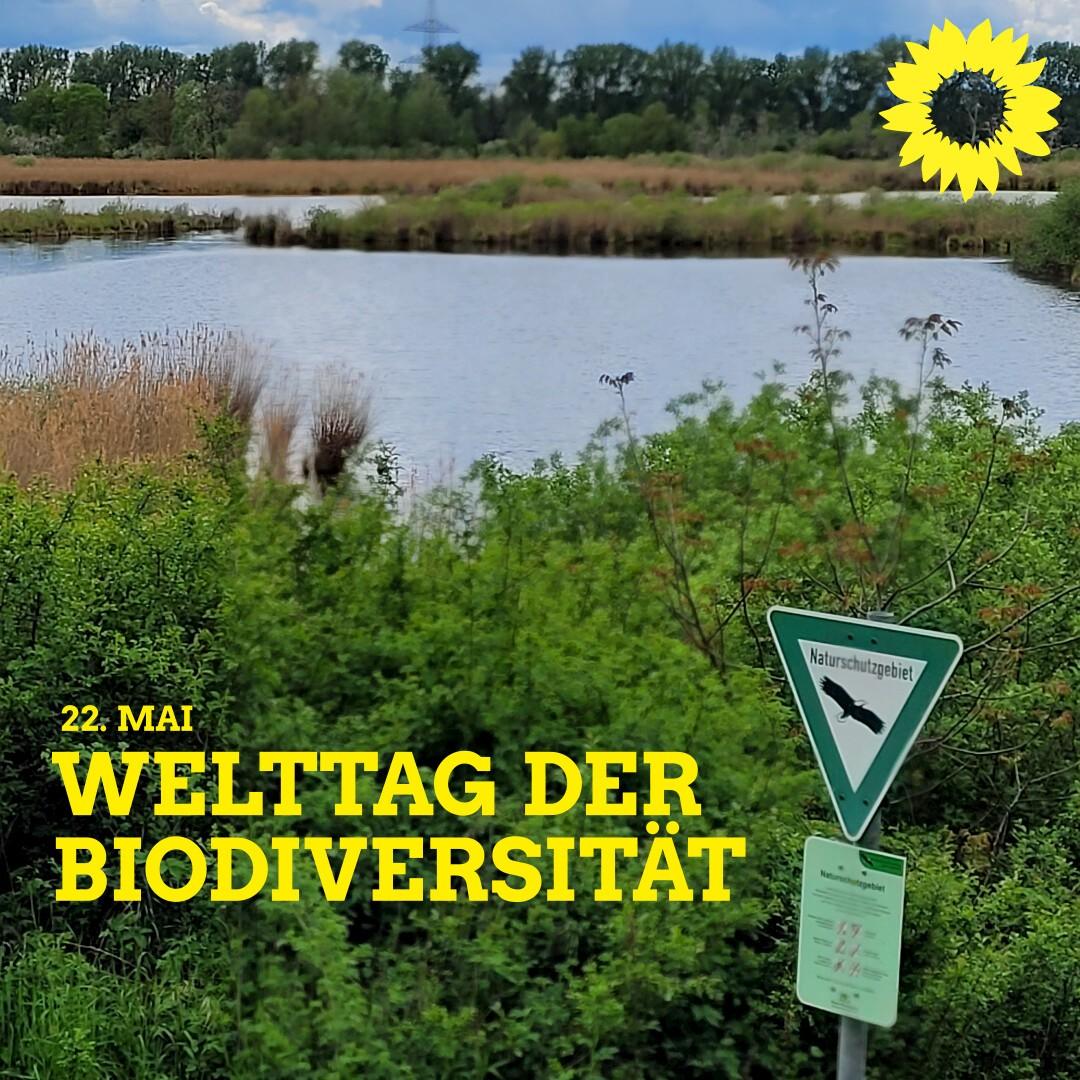 Biodiversitaet