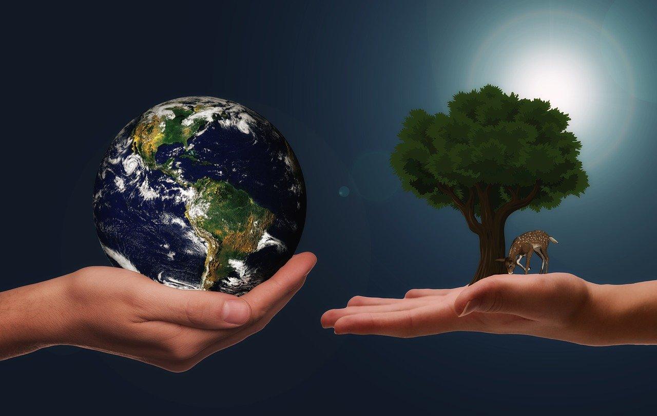 Hands Earth Next Generation  - geralt / Pixabay