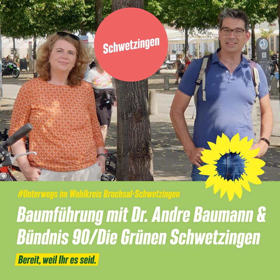 Baumführung in Schwetzingen mit Staatssekretär Dr. Andre Baumann und den Grünen Schwetzingen